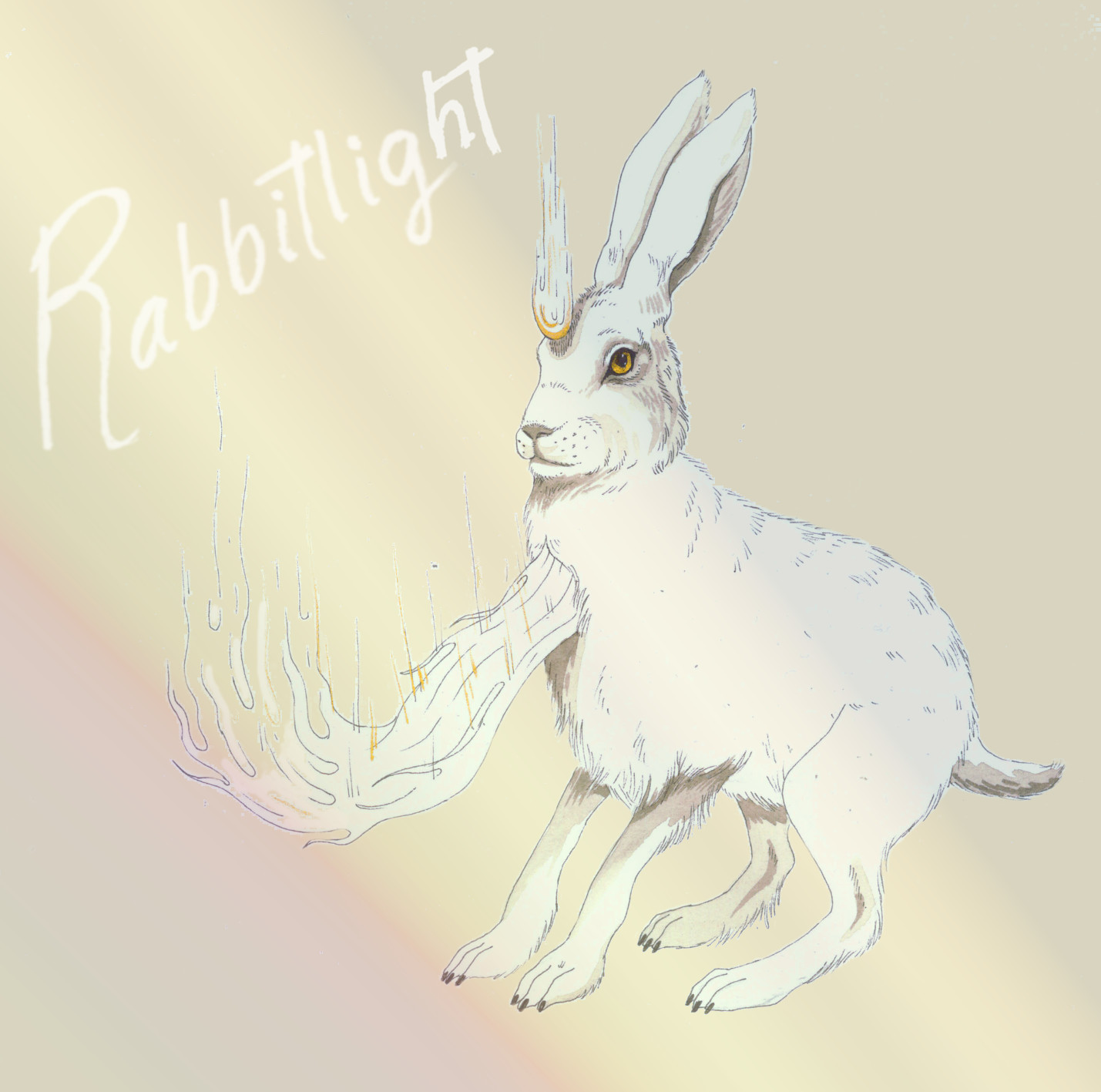 RABBITLIGHT COVER ago 2015